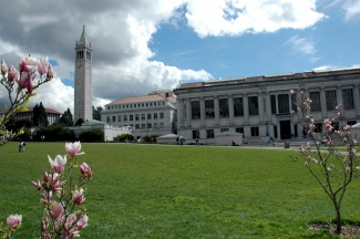 Picture of Campanile and library on Berkeley's campus.